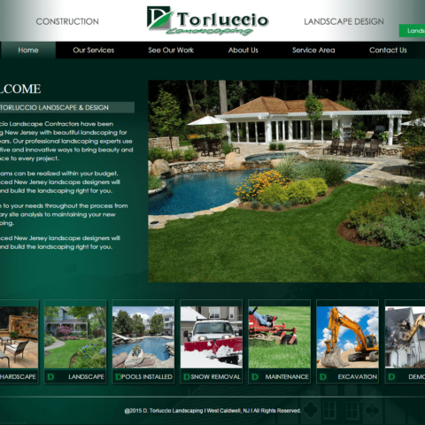 Website 30